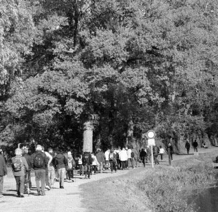 Randonnée pédestre – Paimpont/les landes de Gurvan