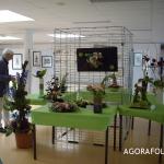 Agorafolies 2011